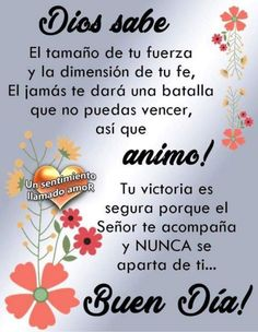 Are you searching for inspiration for good morning images?Browse around this site for unique good morning images inspiration. These funny pictures will brighten your day. Good Morning Messages, Good Morning Images, Good Morning Quotes, Good Morning In Spanish, Spanish Greetings, Gods Love Quotes, Good Tutorials, God Prayer, Morning Greeting