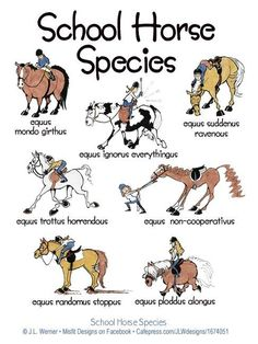 Oh, these horses! LOL!