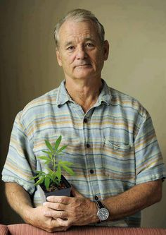 You couldn't be funnier than Bill Murray even if you tried, only because he doesn't even try.