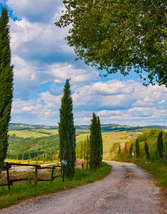 ***Country road near Volterra (Tuscany, Italy) by Marc Pelletier
