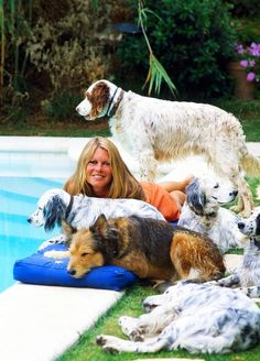 Brigitte Bardot with her dogs at La Madrague, Saint-Tropez, 1980 Look at those english setters! Fondation Brigitte Bardot, Birgitte Bardot, Celebrity Dogs, Look Dark, Bridget Bardot, Dog Insurance, Mans Best Friend, Belle Photo, Animals
