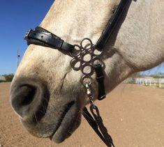 Flower Hackamore The Horse's Hoof - A Bitless-Bit for Dressage/High School Riders