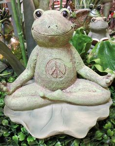 New Arrival - Peace Frog