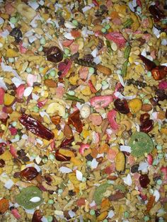 Bountiful Harvest Blend for Parrots PER LB. - MY BIRD SAFE BLENDS by MY SAFE BIRD STORE