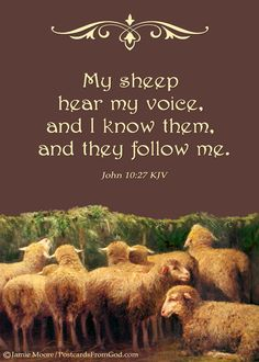 John 10:27 (KJV)