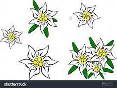 Edelweiss logo зурган илэрцүүд