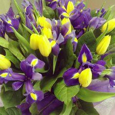 flowers nature purple yellow