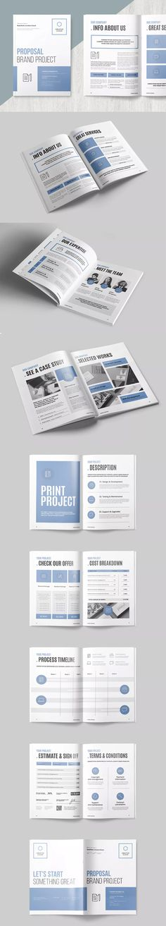 Pages Business Project Proposal Template Indesign Indd