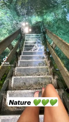 Nature Gif, Nature Videos, Europe Destinations, Wild And Free, Video Photography, Amazing Nature, Indoor Garden, Biology, Sunrise