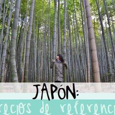 ¿Cuanto cuesta viajar a Japón? Te contamos cuales son los precios de referencia :)