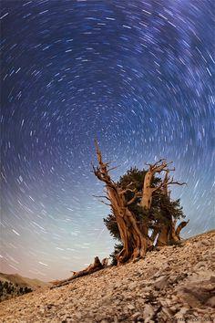 Beautiful time-lapse photography.