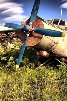 ♂ Aged with beauty - Abandoned Rusty Old Plane #abandoned #rusty #old