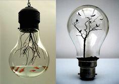 Reciclaje creativo con bombillas: Fotos de ideas DIY