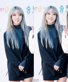 """144 Me gusta, 1 comentarios - Mamamoo is life (@moomoolicious91) en Instagram: """"I love her silver hair #mamamoo #solar #moonbyul #wheein #hwasa #moonstar #moonsun #wheesa…"""""""