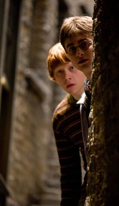 Ron and Harry | Harry Potter and the Half-Blood Prince