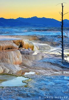 Mammoth Hot Springs in Yellowstone National Park by James Neeley