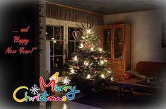 Zaunwickenwelt : Frohe Weihnachten!