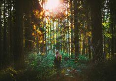 farhad-ghaderi,trees-sunset-sun-sunlight-girl-forest-canon-landscape-50mm-woods.jpg (1024×713)
