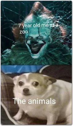 45 Random Funny Memes 38 6