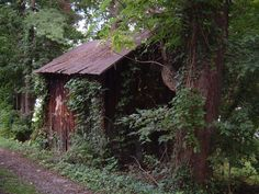 An Old Shed by Lady-KL