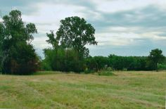 ***SOLD*** in Decatur. Below market value. 20 acres, over 800 ft frontage on Hwy 287 w/ a north-south crossover directly across from the gate. Lots of grazing pasture, ponds, building pad & newer well. Grove of trees around the lg pond gives the rear of property privacy & limits hwy noise for home, barn, etc. Great grass for stock. Commercial or Residential. Motivated seller. Cliff Moon, Realtor®, GRI,ABR, Emersons Realty. Direct: 817.229.6599