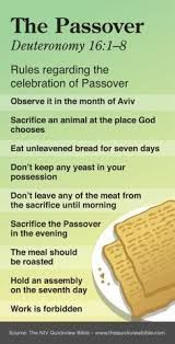 Image result for quick view bible exodus staff