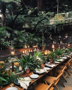 Barbican Conservatory is a Wedding Venue in London, United Kingdom. See photos and contact Barbican Conservatory for a tour. Wedding Locations, Wedding Venues, Wedding Shot, Bali Wedding, Wedding Music, Cute Wedding Ideas, Wedding Inspiration, Barbican Conservatory, Decoration Buffet
