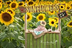 Sunflower Newborn Crochet Hat Handmade Summer by TeenyTinyProps, $25.00