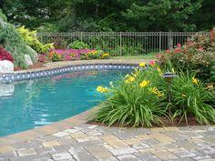 some low debris plants for around pool