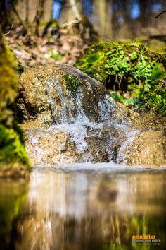 little waterfall by Reinhard Loher on Waterfall, Nature, Waterfalls