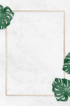 Blank rectangle monstera frame vector | premium image by rawpixel.com / NingZk V. Framed Wallpaper, Flower Background Wallpaper, Flower Phone Wallpaper, Flower Backgrounds, Wallpaper Backgrounds, Iphone Wallpaper, Backdrop Background, Art And Illustration, Free Illustrations