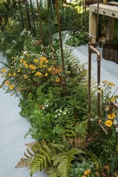 Landform Consultants - Design Back Gardens, Outdoor Gardens, Plant Design, Garden Design, Evergreen Garden, Border Plants, Pond Landscaping, Garden Trellis, Autumn Garden