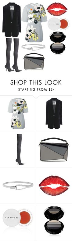 """""""I Ain't the Same"""" by feralkind ❤ liked on Polyvore featuring Marni, 8, Balenciaga, Loewe, Diane Von Furstenberg, Givenchy, Herbivore and Giorgio Armani"""