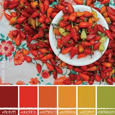 mexican color palette - Google Search