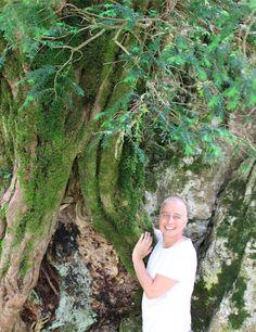 Aprende a restaurar conmigo de forma sostenible y ecológica, respetando la naturaleza y conservando nuestros bosques y árboles. Restaura Conmigo Tania Hernandez