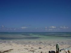 Anne's Beach, Islamorada, Florida Keys....great for wading in the water, swimming, and snorkeling for little kids.