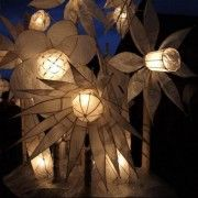 Reflections on the 2011 Bentham Lantern Parade