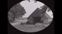 Video: DE GELDERSE VALLEI | DE GELDERSE VALLEI (ACTE 2) (1929) - Tweede deel van een film over bedrijfsleven en ondernemersschap in de Gelderse Vallei. In dit deel dorpsbeelden van Ede en Barneveld, de ENKA-fabrieken, en verder schaapskudden, een congrescentrum, en de kippen- en eiermarkt te Barneveld.