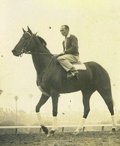 """Noor was an Irish-bred Thoroughbred racehorse Champion who competed successfully in the United Kingdom and the United States. Given the Arabic name meaning """"Light"""",was famous for his come-from-behind stretch drives, in 1950 Noor finished the season with a record of 7-4-1 from his 12 starts.Noor died on November 16, 1974 at the age of 29 and in 2002, she was inducted into the United States' National Museum of Racing and Hall of Fame."""