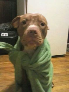 sad face after bath