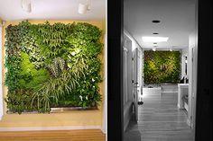 A cool vertical garden looks like a work of art