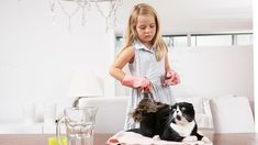 The invisible pet pollutants in your home