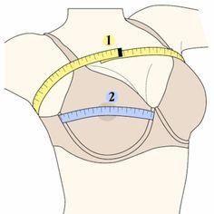 How to Measure Bra Size: Bra Size Chart Underwear Pattern, Lingerie Patterns, Bra Pattern, Clothing Patterns, Sewing Patterns, Sewing Bras, Sewing Lingerie, Jolie Lingerie, Sewing Clothes