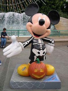 Disneyland's California Adventure!