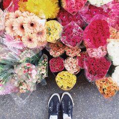 Stay classy   #fwisfeed #fromwhereistand #ihavethisthingwithflowers #igersroma #igerslazio #igersitalia #meetrome #romanity