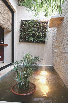 private courtyard with water feature that would not get blown by wind!