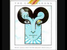 THE CHAMELEONS ~ P.S. Goodbye