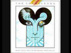 THE CHAMELEONS ~ P.S. Goodbye