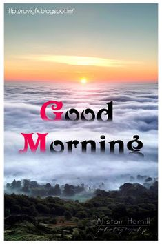 Looking for for images for good morning quotes?Browse around this site for unique good morning quotes ideas. These funny images will make you happy. Good Morning Nature, Good Morning Beautiful Quotes, Good Morning Images Hd, Good Morning Sunshine, Good Morning Messages, Good Morning Greetings, Morning Pictures, Good Morning Wishes, Good Morning Good Night