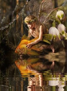 mekelhorn:The Fairy and The Fish  Deep within the forest her fairy magic makes everything alright. ~Charlotte (PixieWinksAndFairyWhispers)